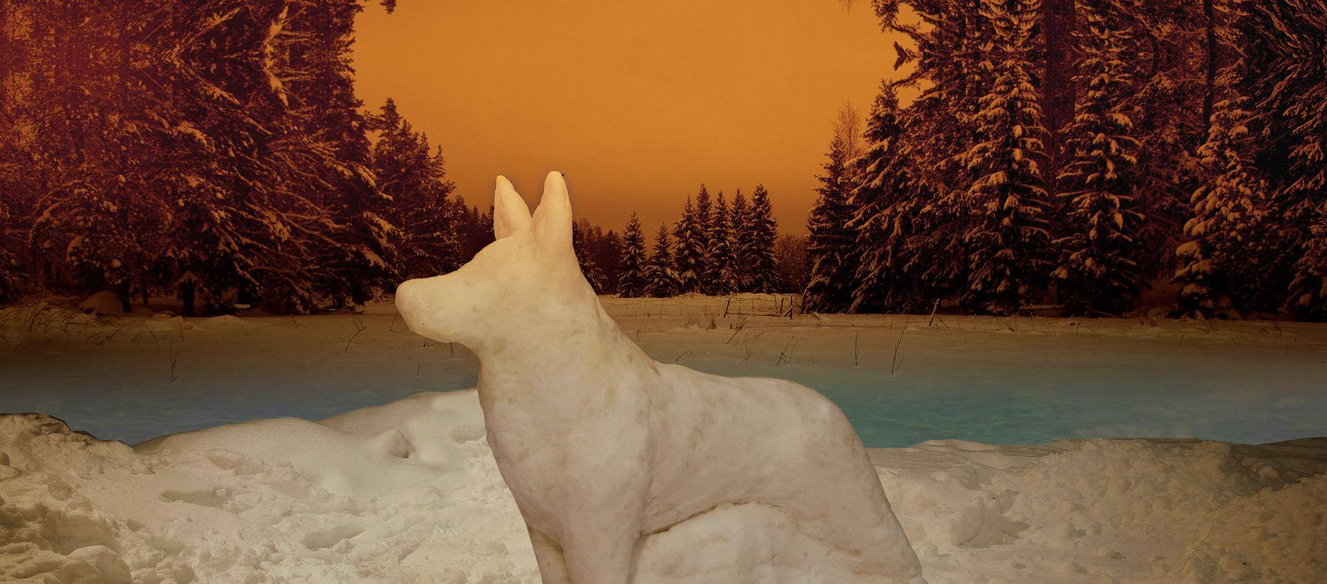 Arktiset leikit